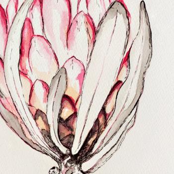 Botanical Art Illustration